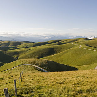 Les collines de Soave
